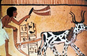 Ancient Egypt plough