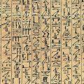 511px-Papyrus_Ani_curs_hiero.jpg