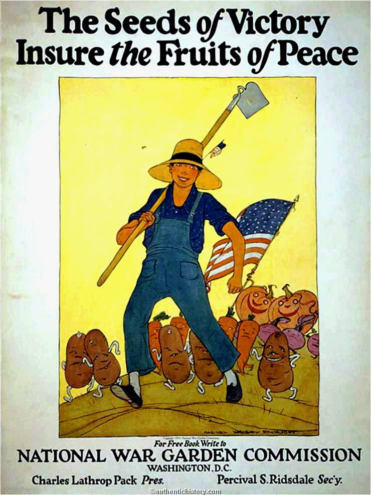 WWI Home Front: A Gall...