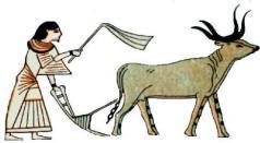 ancient egypt social structure