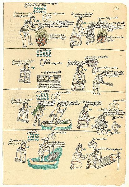 Aztec Education Learning At Home And School History