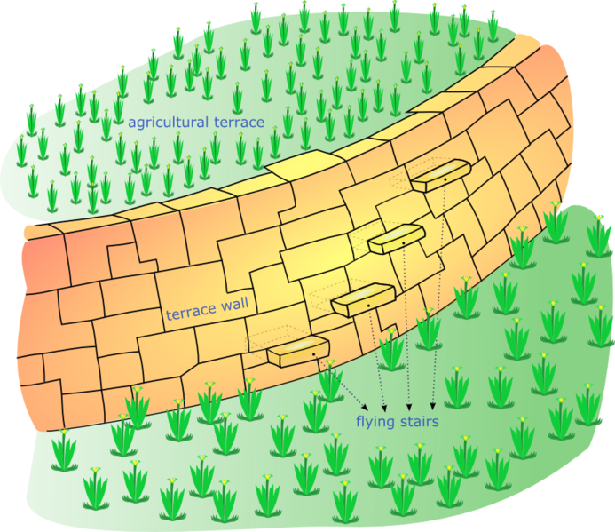 Diagram showing a terrace for growing food, used by many Mesoamericans
