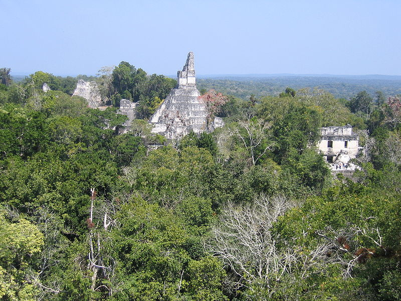 Tikal, Guatemala, rising out of the rainforest. By Peter Anderson (own work) [CC BY SA 2.5], via Wikimedia Commons