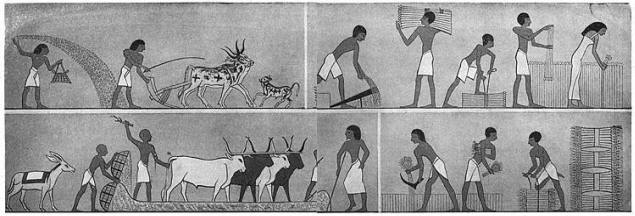 egyptian linen clothing